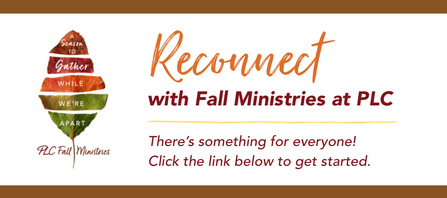 Fall Ministries home pg gold line